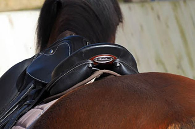 le-saddle-fitting--pourquoi-