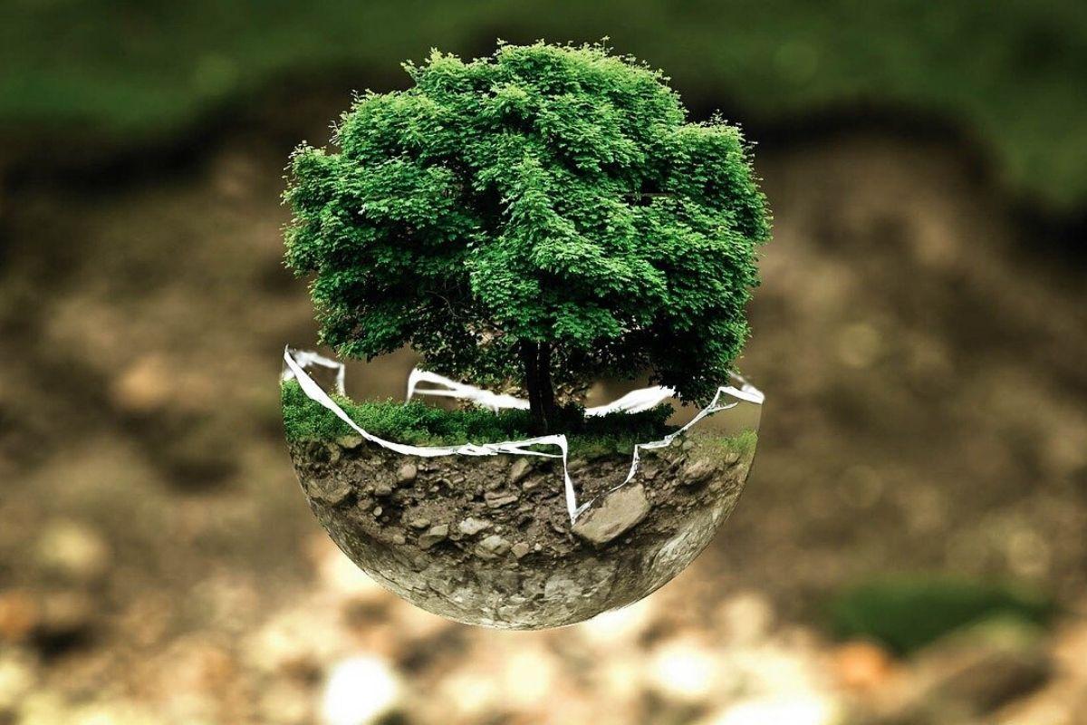l-eco-responsabilite-du-cavalier